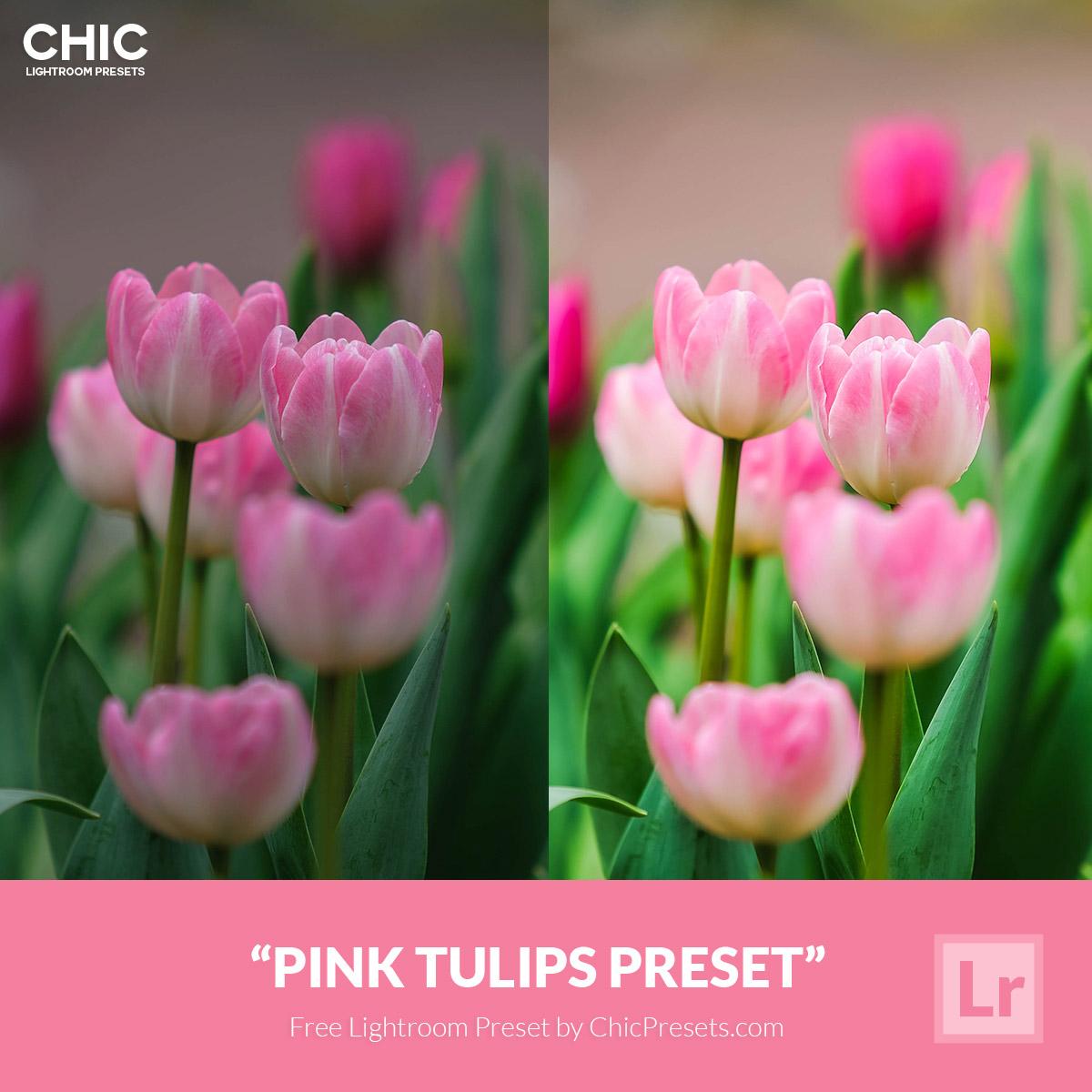 Free-Lightroom-Preset-Pink-Tulips-Chic