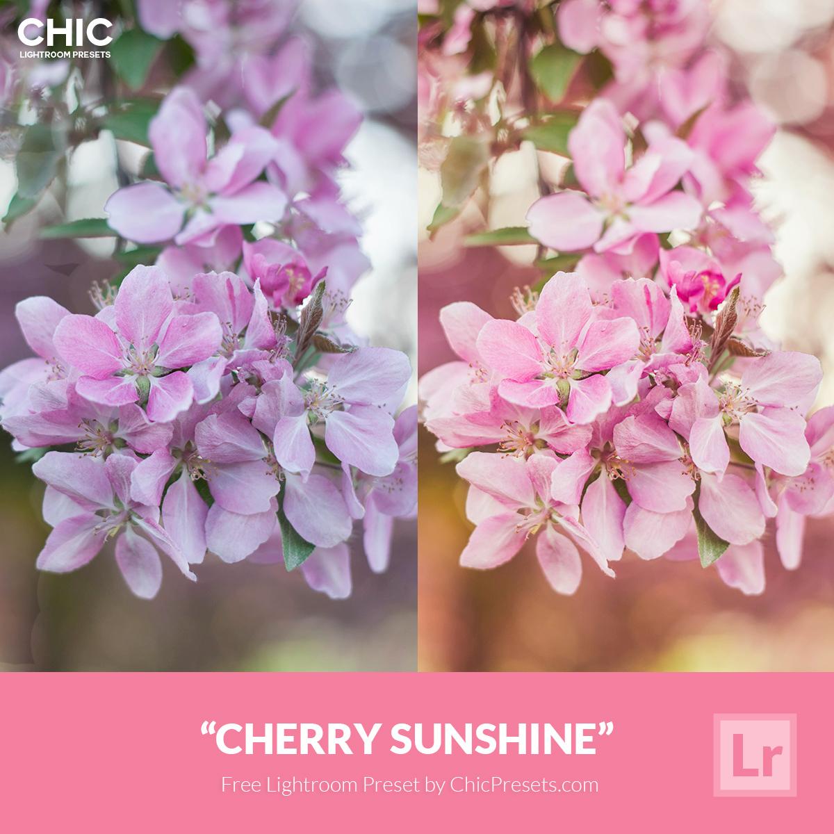 Chic-Presets---Cherry-Sunshine-Free-Preset