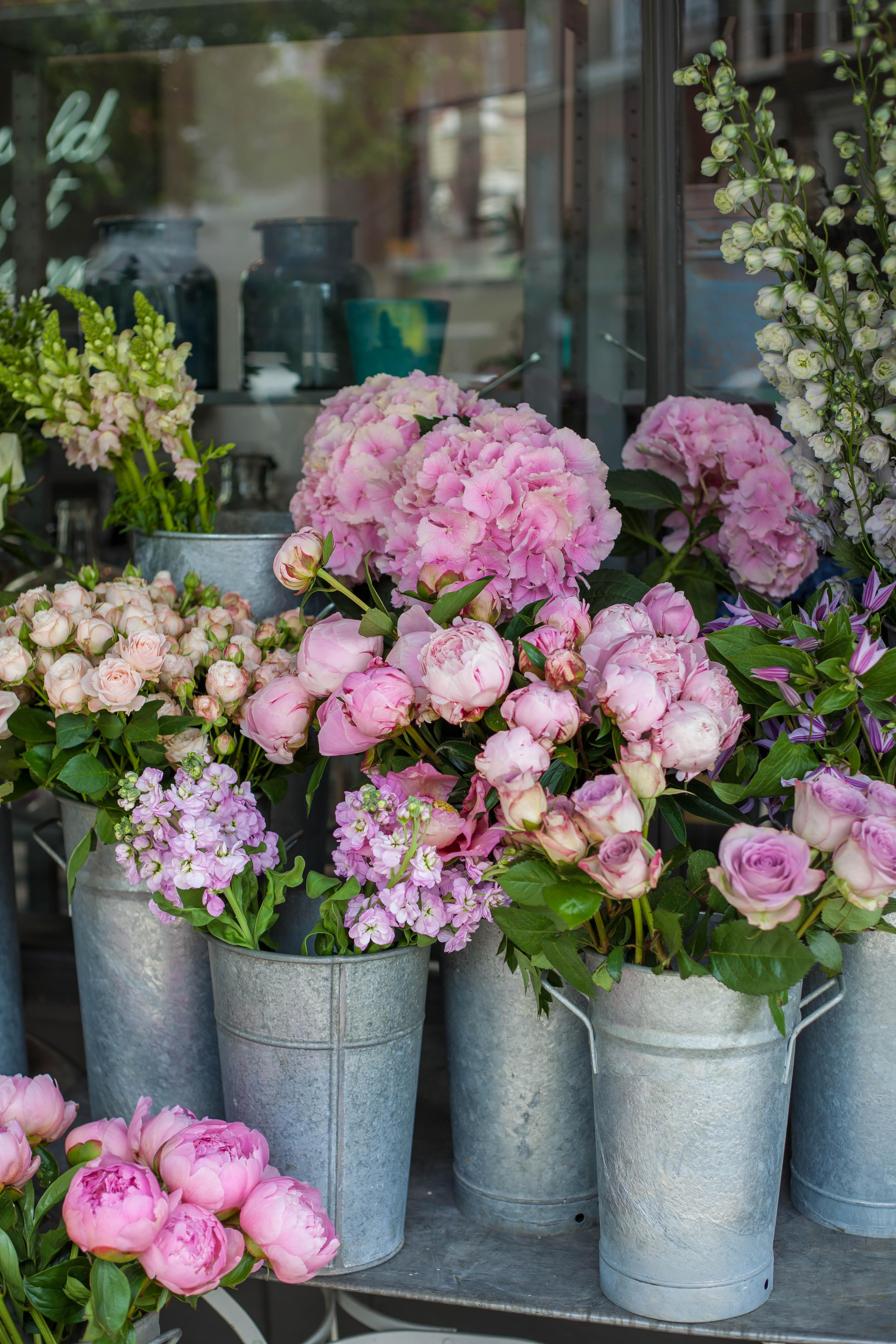 Chic Notes: Pink Peonies in Paris