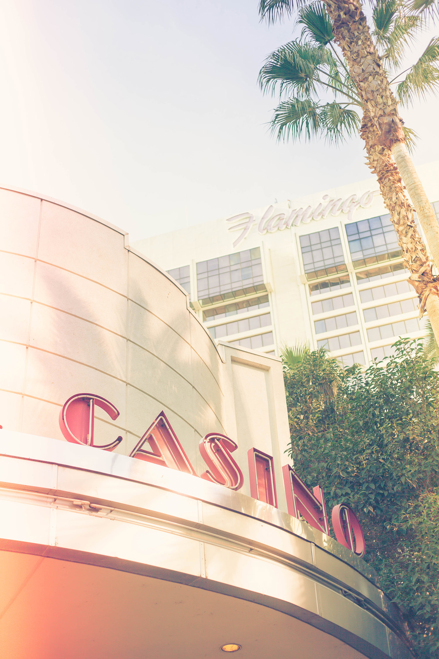 Viva Las Vegas: Chic Lightroom Presets & Brushes!