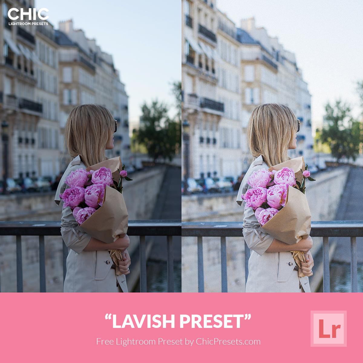 Free Chic Lightroom Preset Lavish