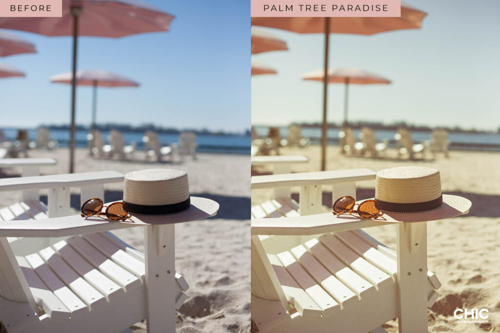 Chic-Lightroom-Presets-The-Details-Collection-Palm-Tree-Paradise